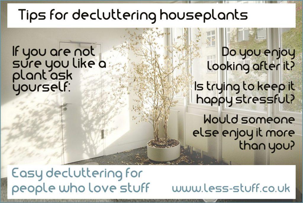 decluttering houseplants