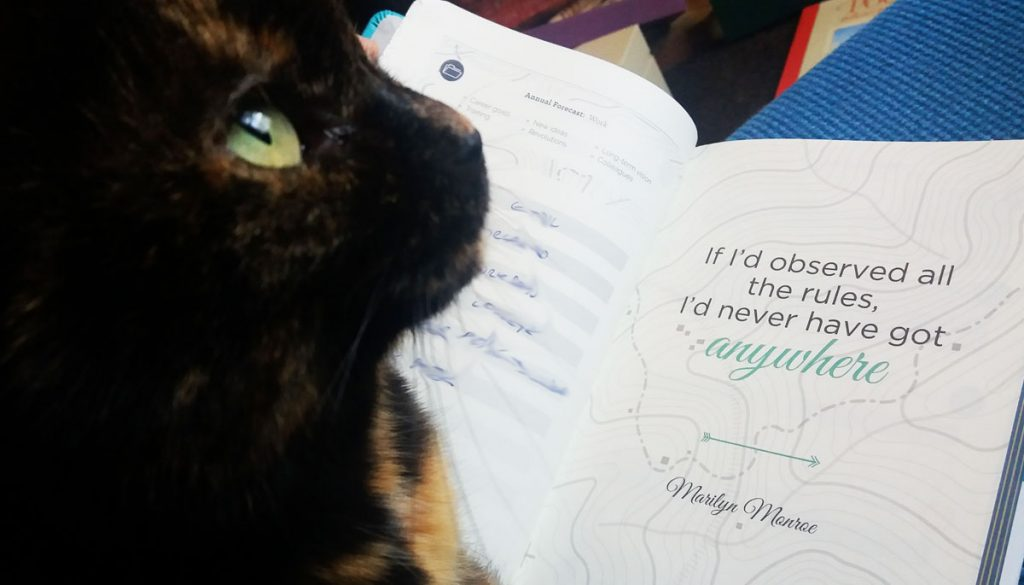 Bug the cat has a manifesto that includes 'never leave a human unsupervised'